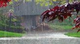 সিলেটসহ দেশের বিভিন্ন জায়গায় বৃষ্টি হতে পারে